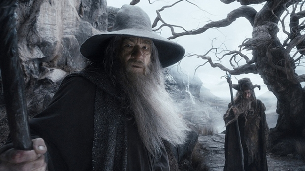 The-Hobbit-The-Desolation-of-Smaug-Gandalf-Radagast