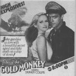 goldmonkey