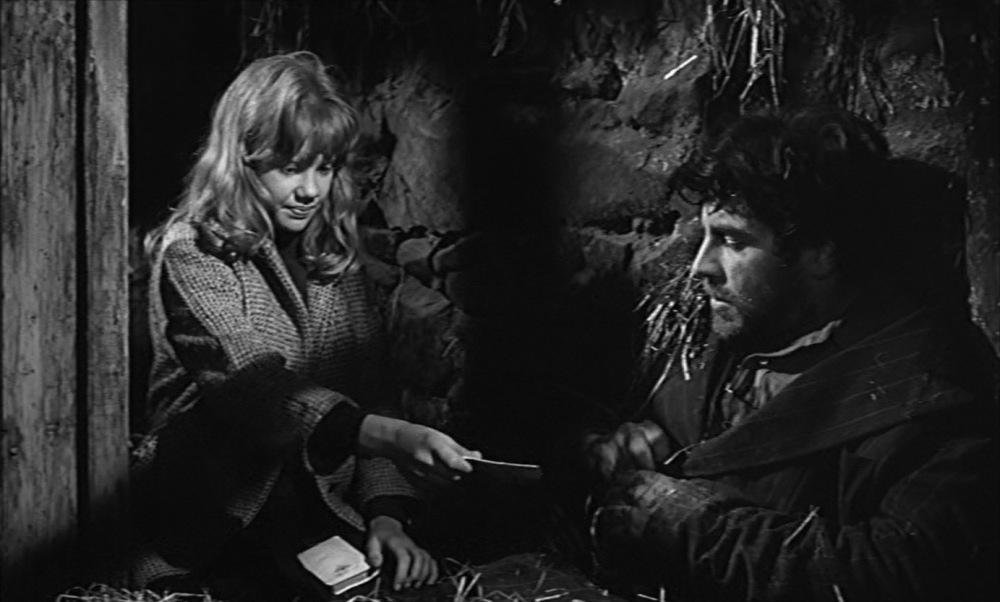 whistle-down-the-wind-alan-bates-hayley-mills-1961-4