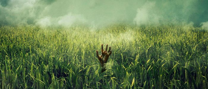 in-the-tall-grass-movie-700x300